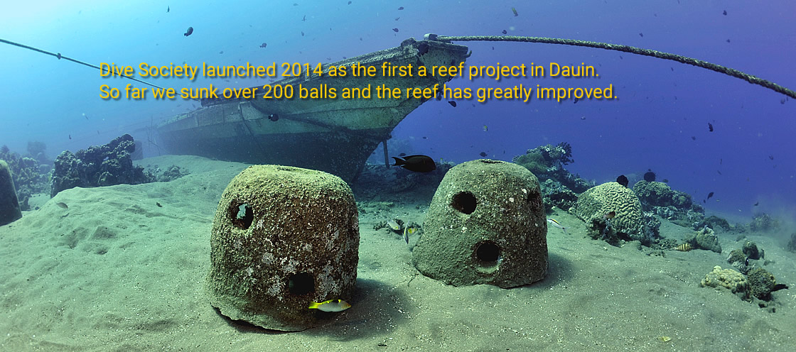 Dive Society's Reef Project in Dauin