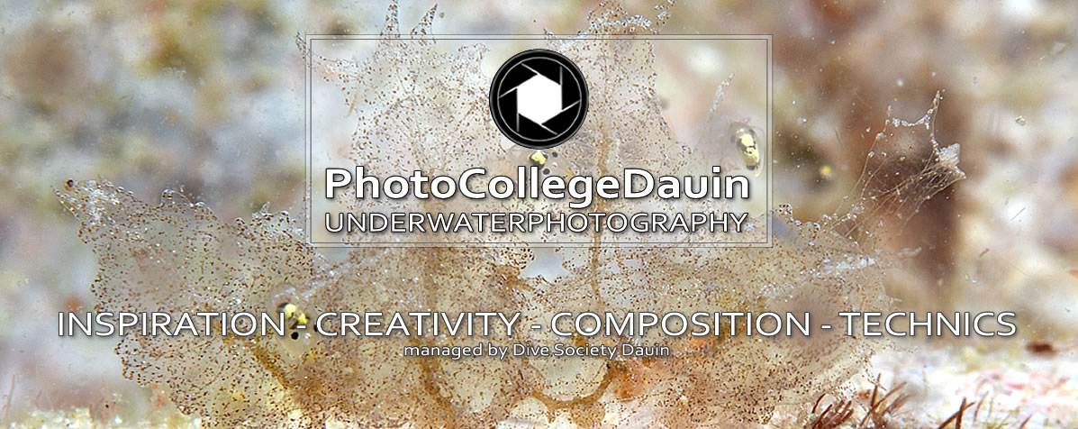 Coming soon - PhotoCollegeDauin