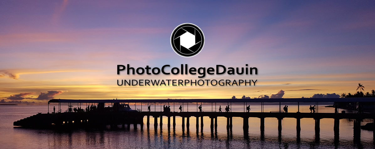 New - DIve Society Photo College Dauin